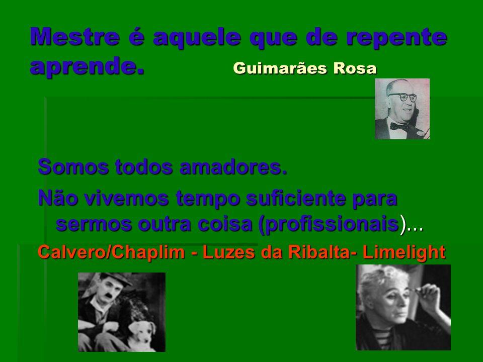 Mestre é aquele que de repente aprende. Guimarães Rosa Somos todos amadores. Não vivemos tempo suficiente para sermos outra coisa (profissionais)... C