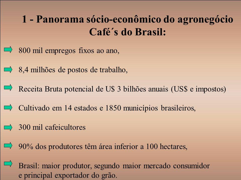 1 - Panorama sócio-econômico do agronegócio Café´s do Brasil: 800 mil empregos fixos ao ano, 8,4 milhões de postos de trabalho, Receita Bruta potencia