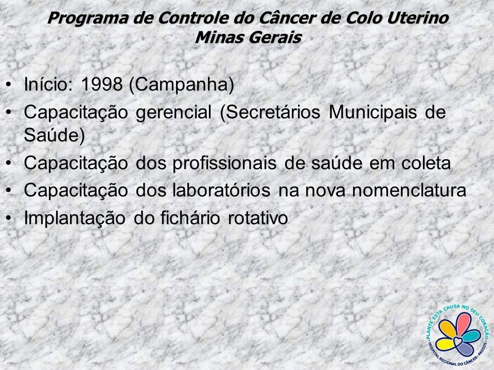 Programa de Controle do Câncer de Colo Uterino Resultados alcançados na realização da citologia cérvico-vaginal no Estado de Minas Gerais – Cód SIA 12.01.101-0 Período: 1995 e 2008* Fonte:SisColo/SES/MG