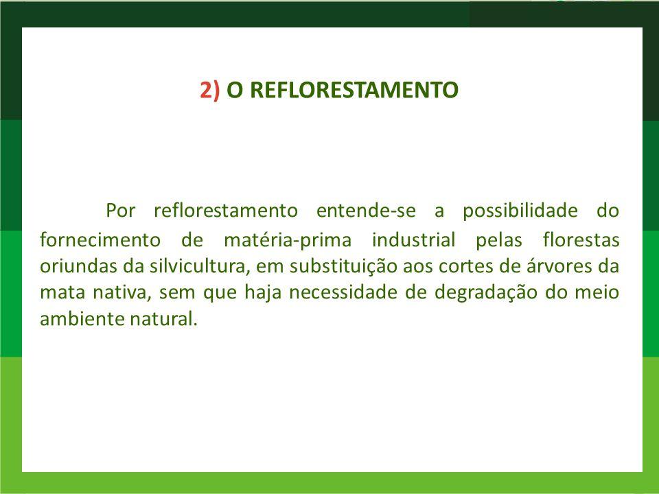 2) O REFLORESTAMENTO Por reflorestamento entende-se a possibilidade do fornecimento de matéria-prima industrial pelas florestas oriundas da silvicultu