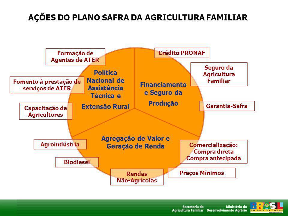 AÇÕES DO PLANO SAFRA DA AGRICULTURA FAMILIAR Política Nacional de Assistência Técnica e Extensão Rural Financiamento e Seguro da Produção Agregação de