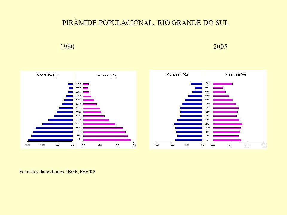 PIRÂMIDE POPULACIONAL, RIO GRANDE DO SUL 19802005 Fonte dos dados brutos: IBGE, FEE/RS