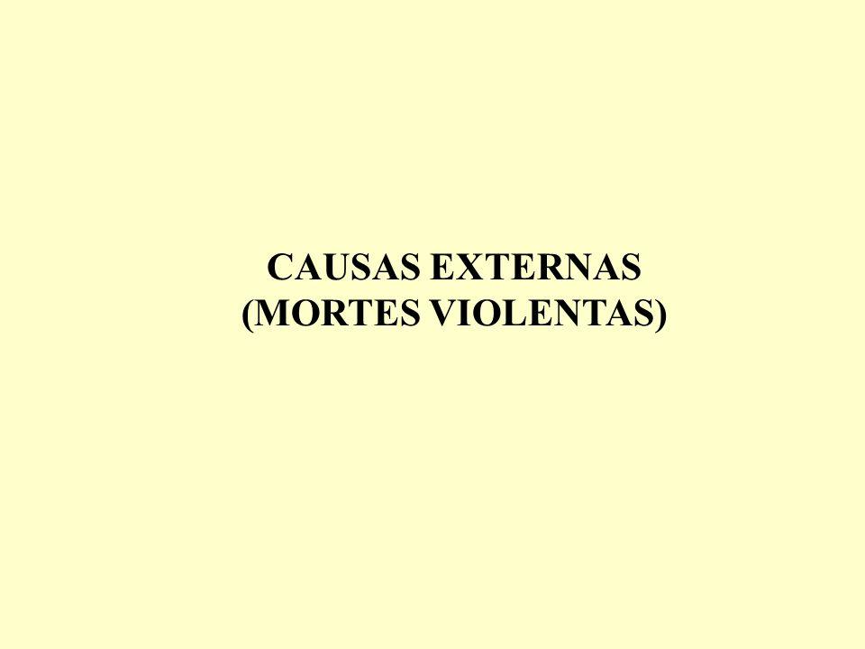 CAUSAS EXTERNAS (MORTES VIOLENTAS)