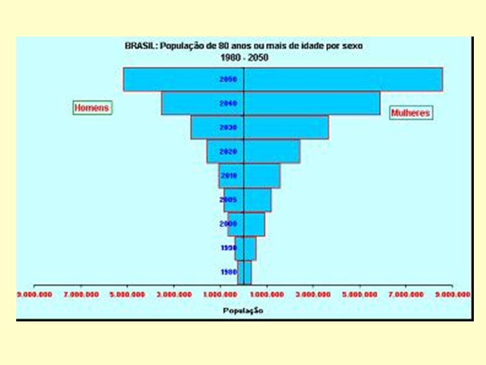 Número de internações por pneumonia, por mês, RS 2004 a 2005 em pessoas com 80 anos e mais.