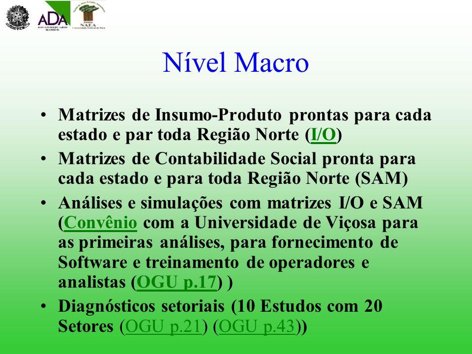 Nível Macro Matrizes de Insumo-Produto prontas para cada estado e par toda Região Norte (I/O)I/O Matrizes de Contabilidade Social pronta para cada est