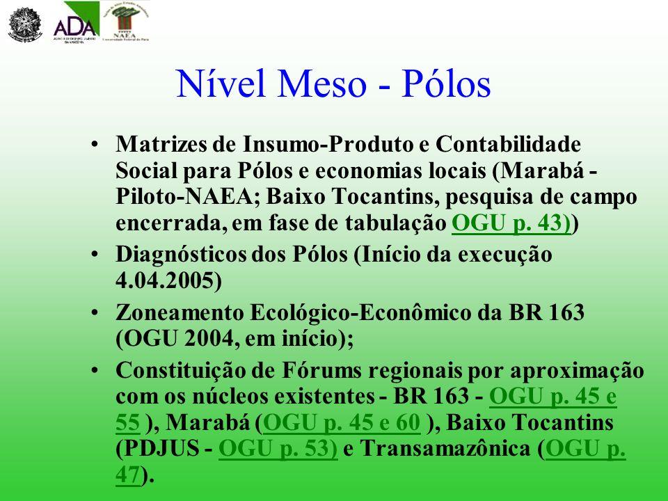 Nível Meso - Pólos Matrizes de Insumo-Produto e Contabilidade Social para Pólos e economias locais (Marabá - Piloto-NAEA; Baixo Tocantins, pesquisa de