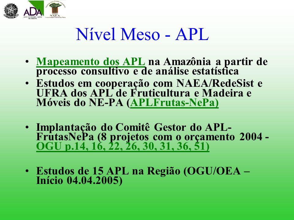 Nível Meso - APL Mapeamento dos APL na Amazônia a partir de processo consultivo e de análise estatísticaMapeamento dos APL Estudos em cooperação com N