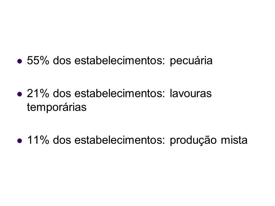 55% dos estabelecimentos: pecuária 21% dos estabelecimentos: lavouras temporárias 11% dos estabelecimentos: produção mista
