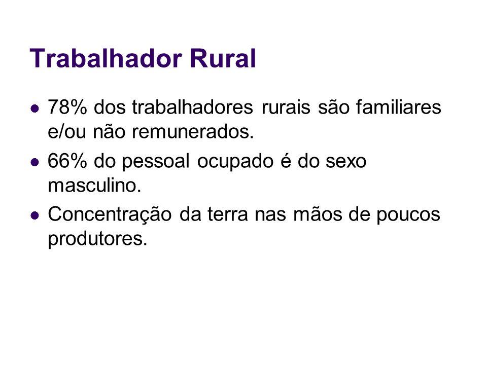 Trabalhador Rural 78% dos trabalhadores rurais são familiares e/ou não remunerados. 66% do pessoal ocupado é do sexo masculino. Concentração da terra