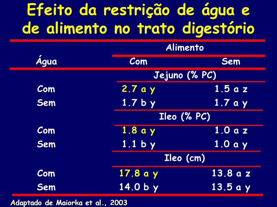 Efeito da restrição de água e de alimento no trato digestório Alimento ÁguaComSem Jejuno (% PC) Com2.7 a y1.5 a z Sem1.7 b y1.7 a y Ileo (% PC) Com1.8