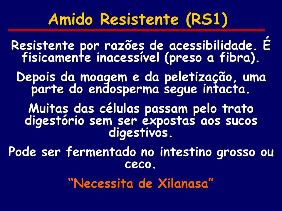 Amido Resistente (RS1) Resistente por razões de acessibilidade. É fisicamente inacessível (preso a fibra). Depois da moagem e da peletização, uma part