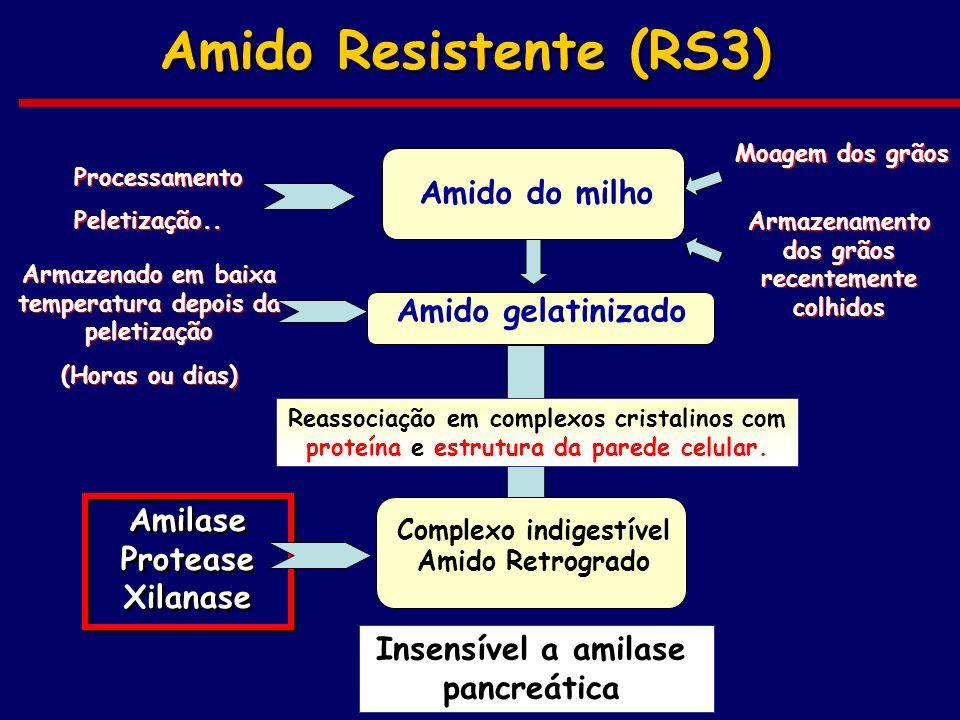 Amido Resistente (RS3) Amido do milho Amido gelatinizado Reassociação em complexos cristalinos com proteína e estrutura da parede celular. Complexo in