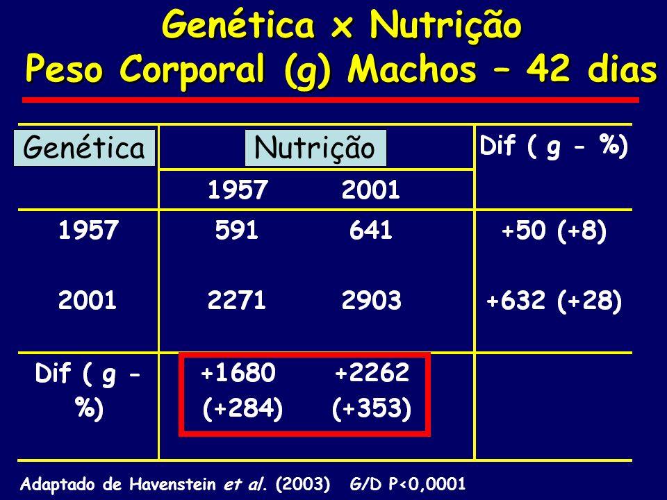 Genética x Nutrição Peso Corporal (g) Machos – 42 dias Genética x Nutrição Peso Corporal (g) Machos – 42 dias Adaptado de Havenstein et al. (2003) G/D