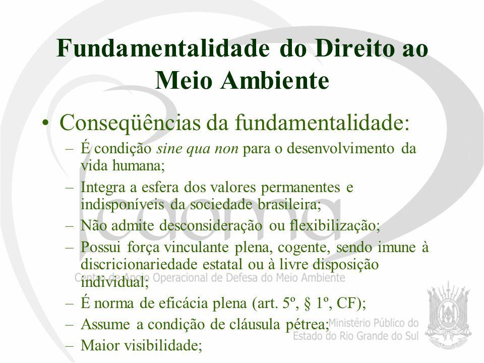 Fundamentalidade do Direito ao Meio Ambiente Conseqüências da fundamentalidade: –É condição sine qua non para o desenvolvimento da vida humana; –Integ