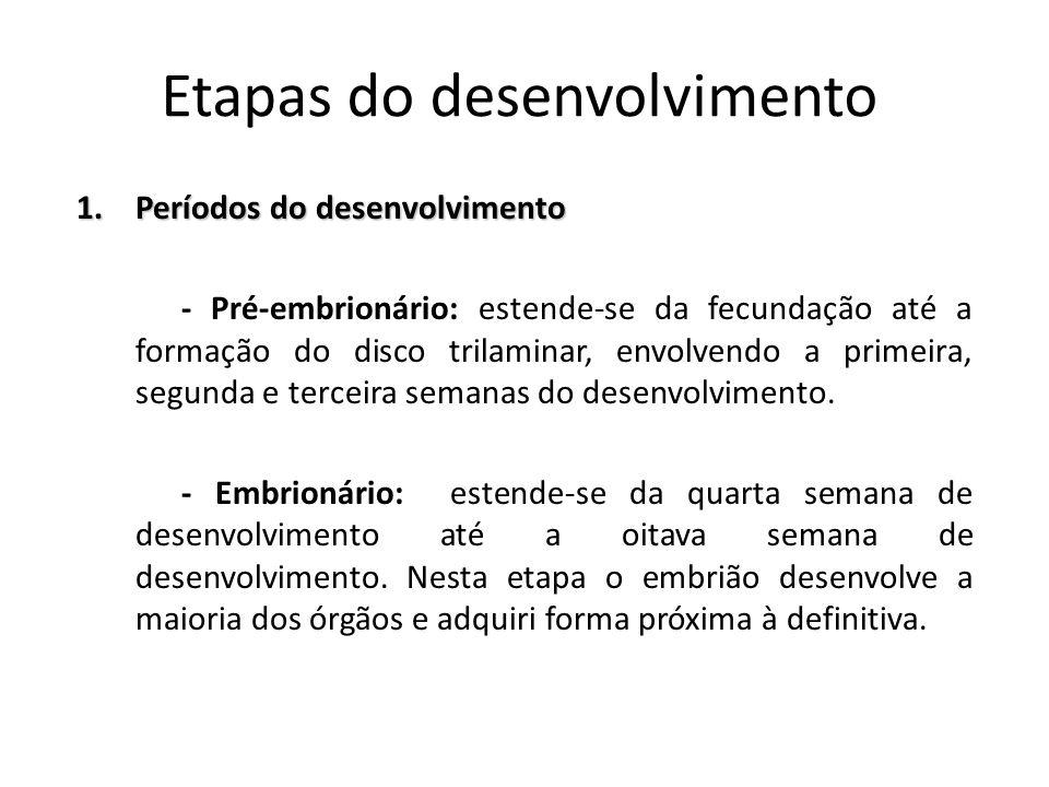 Etapas do desenvolvimento 1.Períodos do desenvolvimento - Pré-embrionário: estende-se da fecundação até a formação do disco trilaminar, envolvendo a p