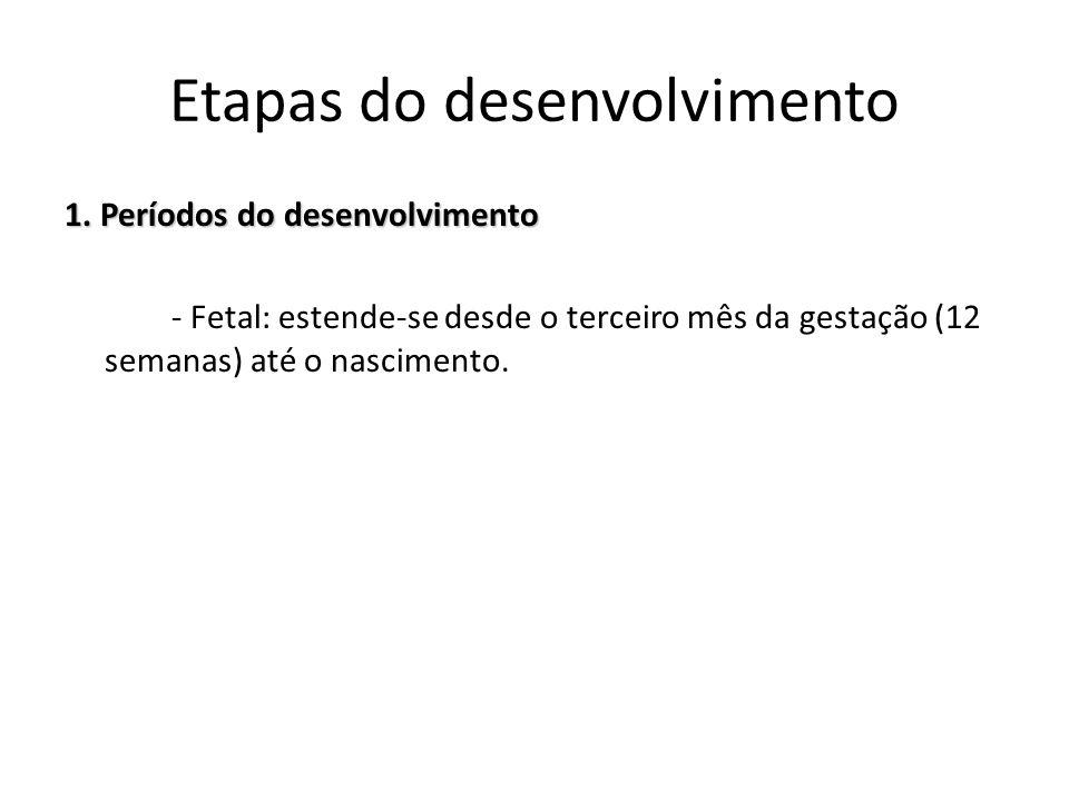 1. Períodos do desenvolvimento - Fetal: estende-se desde o terceiro mês da gestação (12 semanas) até o nascimento. Etapas do desenvolvimento