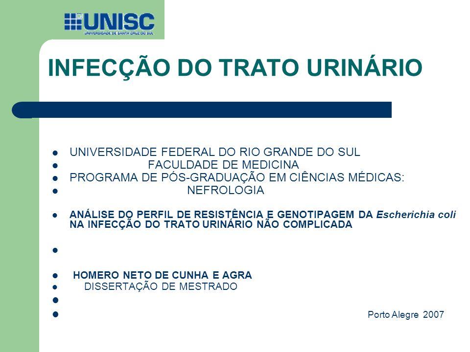 INFECÇÃO DO TRATO URINÁRIO UNIVERSIDADE FEDERAL DO RIO GRANDE DO SUL FACULDADE DE MEDICINA PROGRAMA DE PÓS-GRADUAÇÃO EM CIÊNCIAS MÉDICAS: NEFROLOGIA A