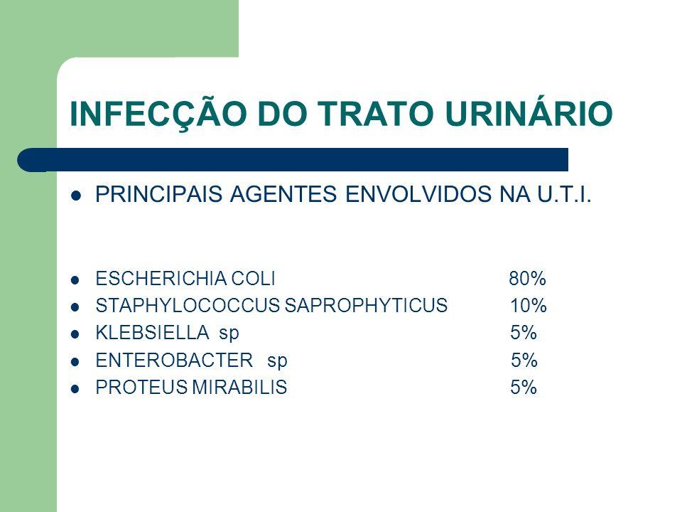 INFECÇÃO DO TRATO URINÁRIO PRINCIPAIS AGENTES ENVOLVIDOS NA U.T.I. ESCHERICHIA COLI 80% STAPHYLOCOCCUS SAPROPHYTICUS 10% KLEBSIELLA sp 5% ENTEROBACTER