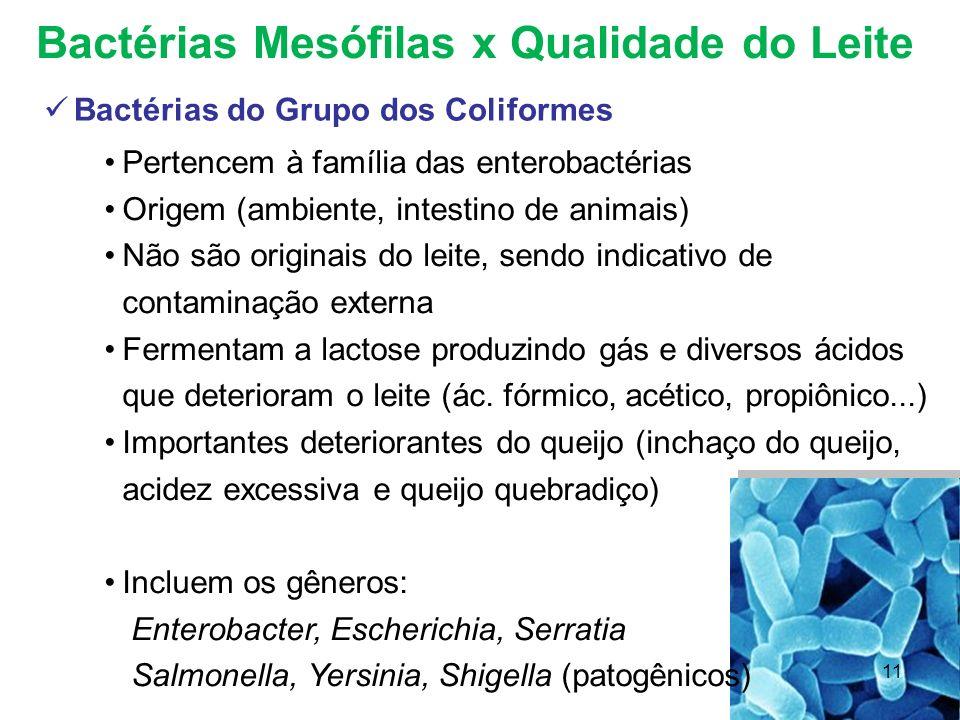 Bactérias Mesófilas x Qualidade do Leite Bactérias do Grupo dos Coliformes Pertencem à família das enterobactérias Origem (ambiente, intestino de anim
