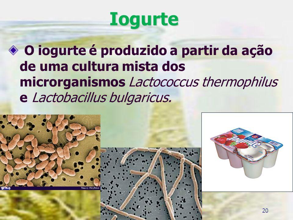 Iogurte O iogurte é produzido a partir da ação de uma cultura mista dos microrganismos Lactococcus thermophilus e Lactobacillus bulgaricus. 20