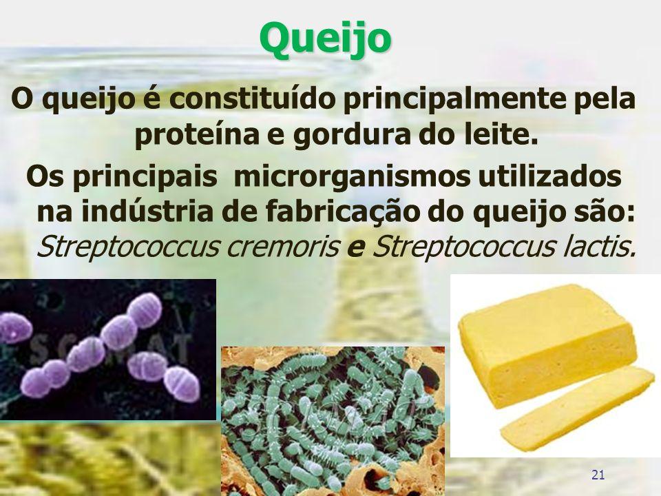 Queijo O queijo é constituído principalmente pela proteína e gordura do leite. Os principais microrganismos utilizados na indústria de fabricação do q