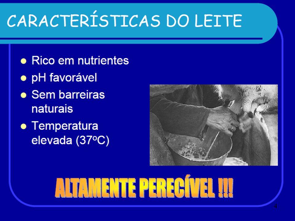 PASTEURIZAÇÃO Processo térmico que visa eliminar a microbiota patogênica do leite.