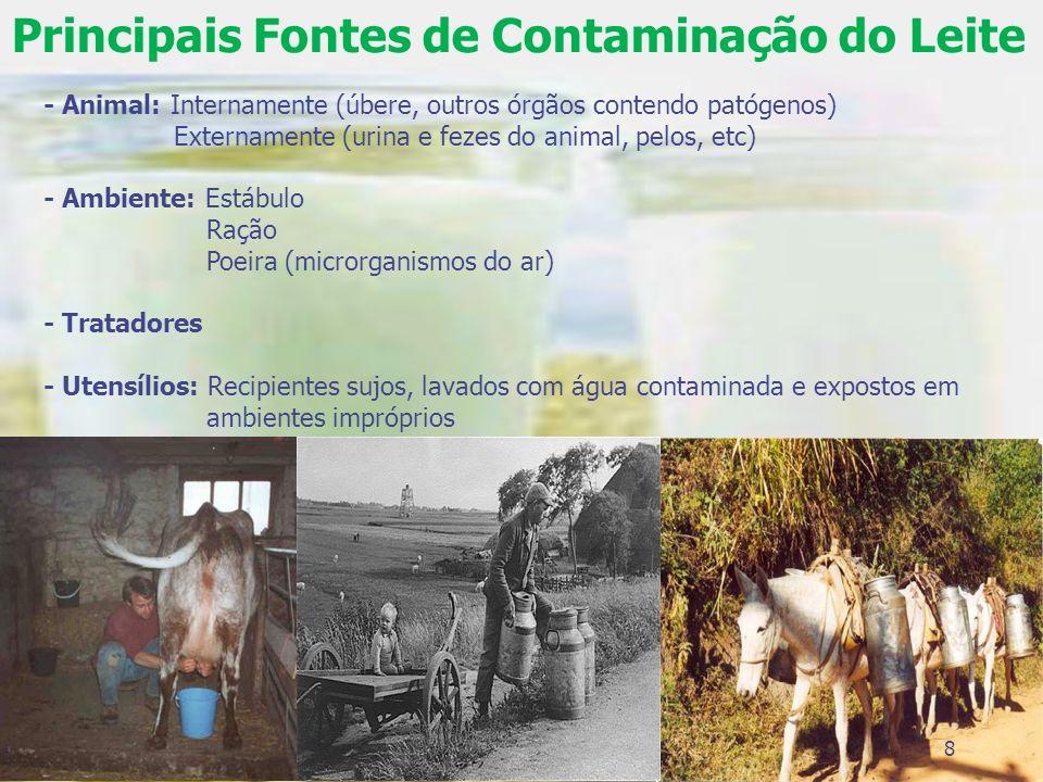 Principais Fontes de Contaminação do Leite - Animal: Internamente (úbere, outros órgãos contendo patógenos) Externamente (urina e fezes do animal, pel