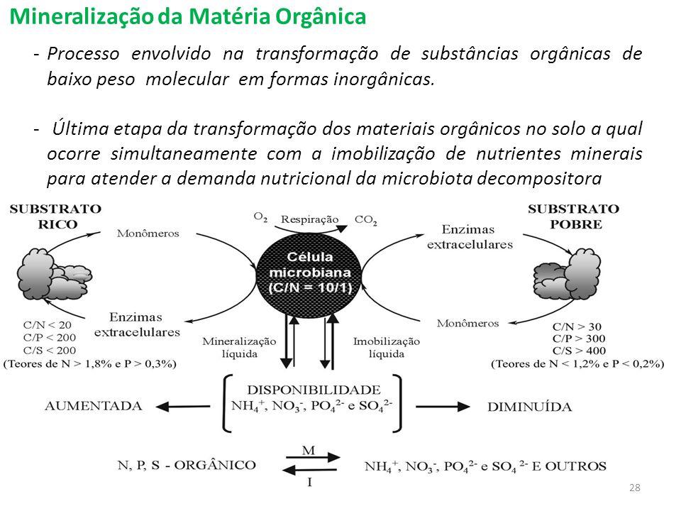Mineralização da Matéria Orgânica -Processo envolvido na transformação de substâncias orgânicas de baixo peso molecular em formas inorgânicas. - Últim