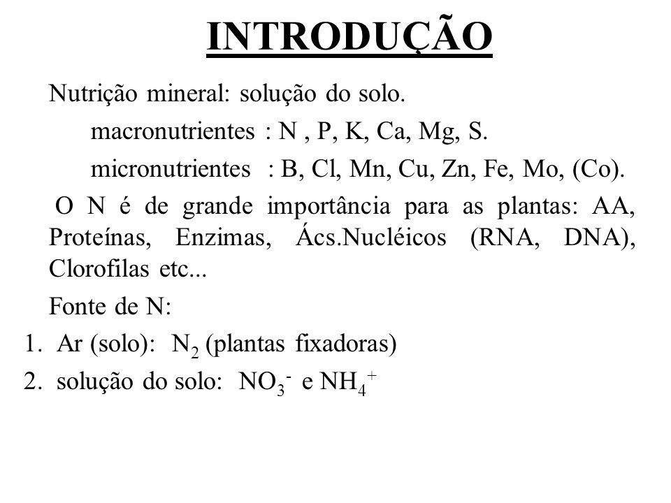 INTRODUÇÃO Nutrição mineral: solução do solo.macronutrientes : N, P, K, Ca, Mg, S.