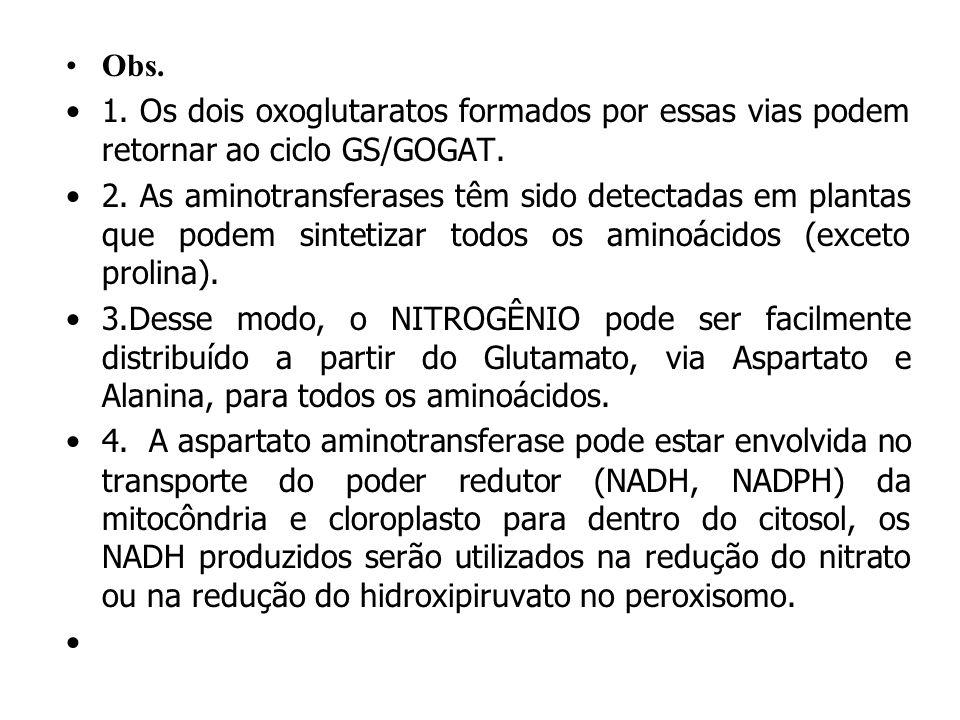 AMINOTRANSFERASES OU TRANSAMINASES Aspartato amino transferase Glu + Oxaloacetato 2-Oxoglutarato + Aspartato Alanina amino transferase Glu + piruvato