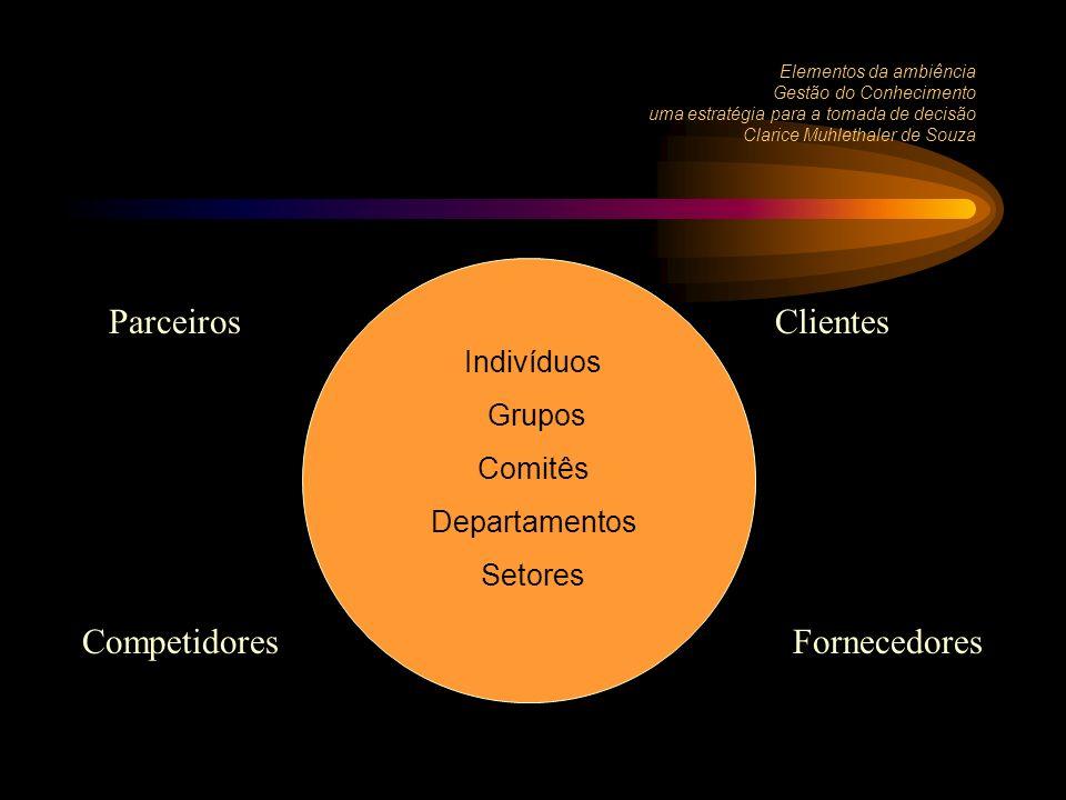Elementos da ambiência Gestão do Conhecimento uma estratégia para a tomada de decisão Clarice Muhlethaler de Souza Indivíduos Grupos Comitês Departamentos Setores ClientesParceiros FornecedoresCompetidores
