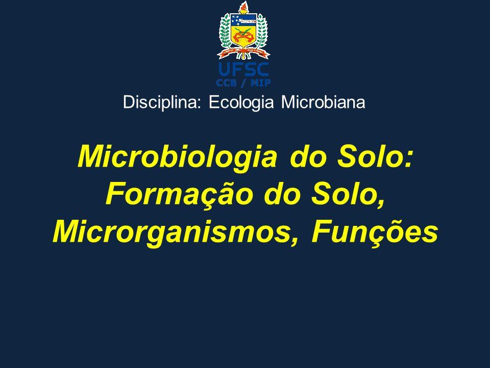 Microbiologia do Solo: Formação do Solo, Microrganismos, Funções Disciplina: Ecologia Microbiana