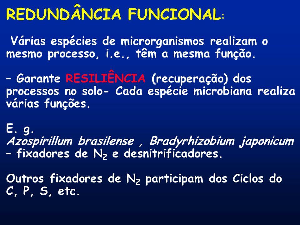 REDUNDÂNCIA FUNCIONAL : Várias espécies de microrganismos realizam o mesmo processo, i.e., têm a mesma função. – Garante RESILIÊNCIA (recuperação) dos