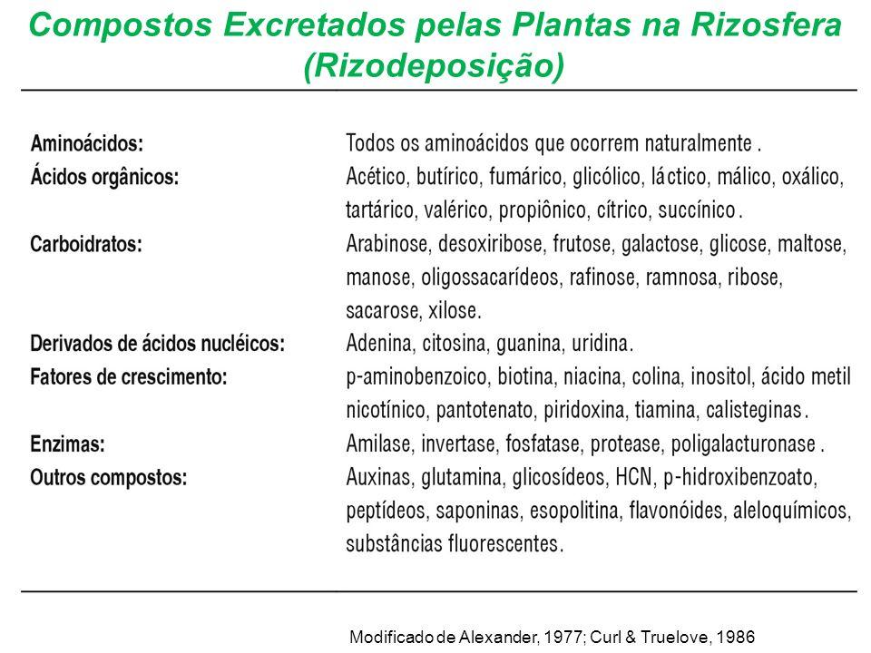 Compostos Excretados pelas Plantas na Rizosfera (Rizodeposição) Modificado de Alexander, 1977; Curl & Truelove, 1986