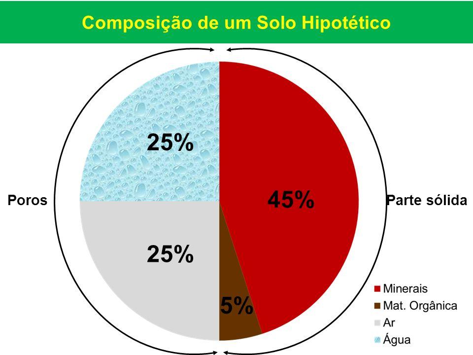 Parte sólidaPoros 25% 45% 5% Composição de um Solo Hipotético