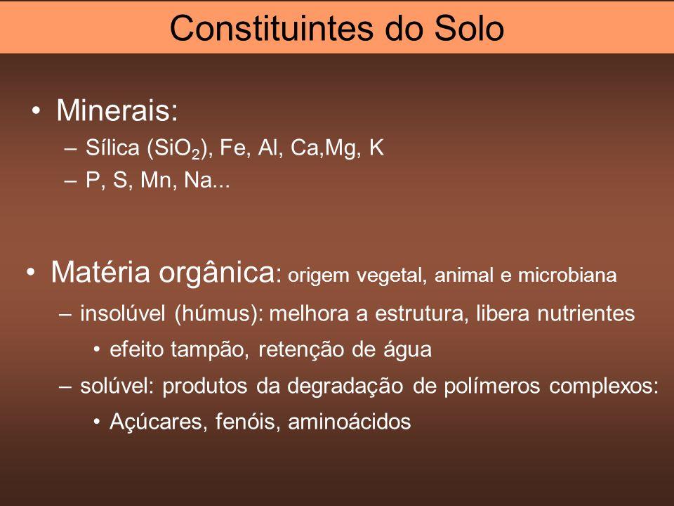 Minerais: –Sílica (SiO 2 ), Fe, Al, Ca,Mg, K –P, S, Mn, Na... Matéria orgânica : origem vegetal, animal e microbiana –insolúvel (húmus): melhora a est