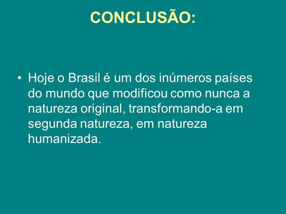 CONCLUSÃO: Hoje o Brasil é um dos inúmeros países do mundo que modificou como nunca a natureza original, transformando-a em segunda natureza, em natur