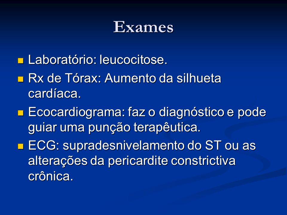 Exames Laboratório: leucocitose. Laboratório: leucocitose. Rx de Tórax: Aumento da silhueta cardíaca. Rx de Tórax: Aumento da silhueta cardíaca. Ecoca