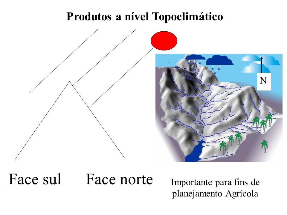 Produtos a nível Topoclimático Face norteFace sul N Importante para fins de planejamento Agrícola