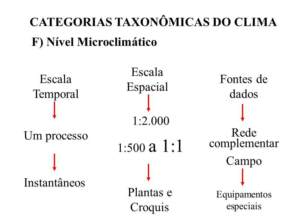 CATEGORIAS TAXONÔMICAS DO CLIMA F) Nível Microclimático Escala Temporal Um processo Instantâneos Escala Espacial 1:2.000 1:500 a 1:1 Plantas e Croquis