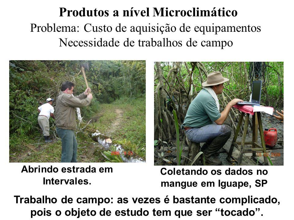 Produtos a nível Microclimático Problema: Custo de aquisição de equipamentos Necessidade de trabalhos de campo Trabalho de campo: as vezes é bastante