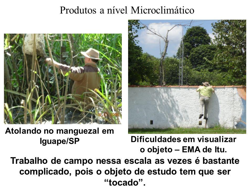 Produtos a nível Microclimático Trabalho de campo nessa escala as vezes é bastante complicado, pois o objeto de estudo tem que ser tocado. Atolando no