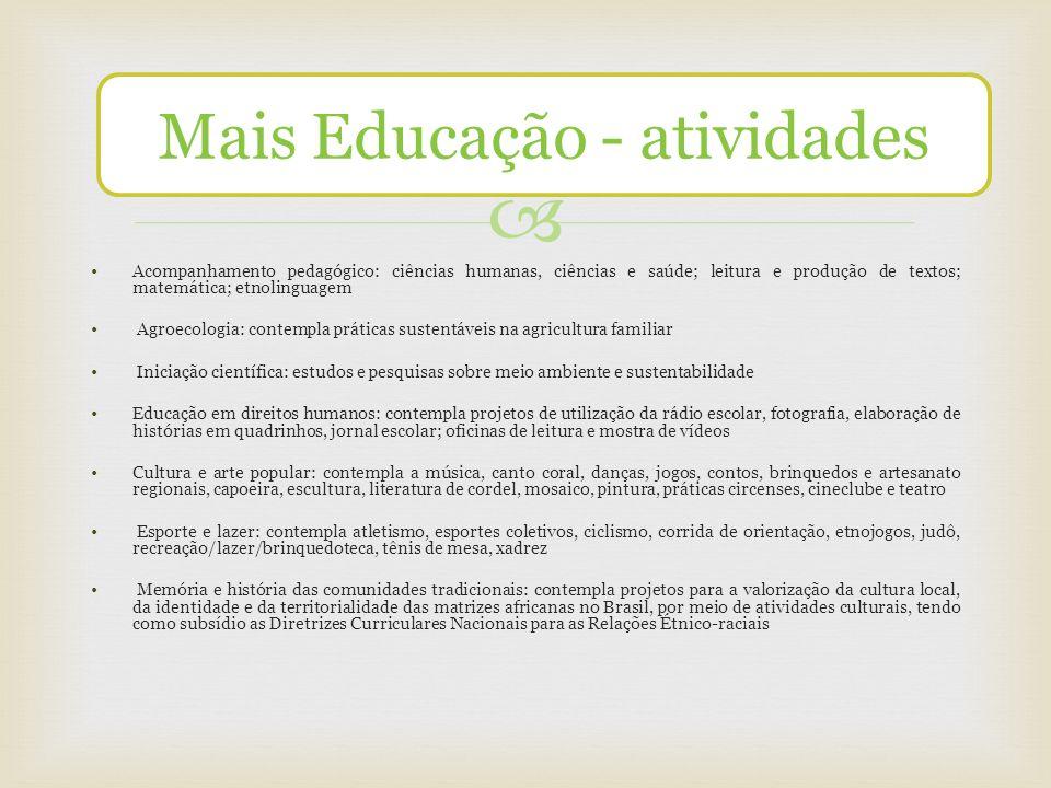Acompanhamento pedagógico: ciências humanas, ciências e saúde; leitura e produção de textos; matemática; etnolinguagem Agroecologia: contempla prática