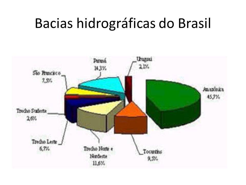 Principais Amazônica; Tocantins Araguaia; São Francisco; Platina ( formada pelas bacias Paraguaia, Paranáica e Uruguaia).