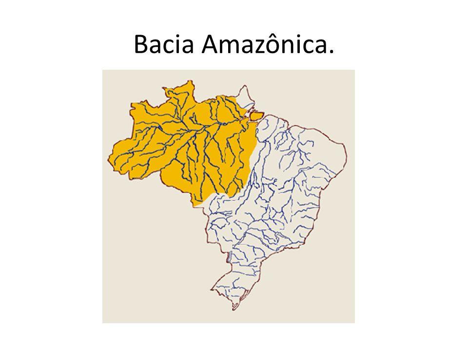 Bacia Amazônica Maior bacia do planeta; Países – Brasil, Venezuela, Colômbia, Bolívia, Equador, Guiana, Guiana Francesa, Peru e Suriname; Denominações do Amazônas- Apurimac, Ucayali, Solimões e Amazônas.