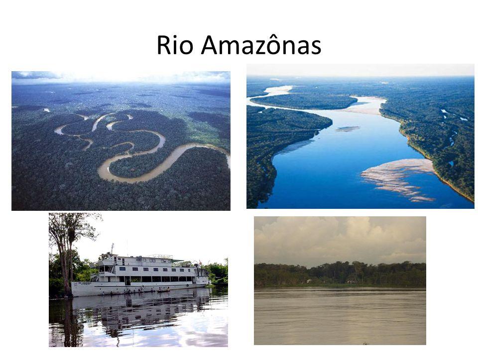 Características do rio Amazônas.