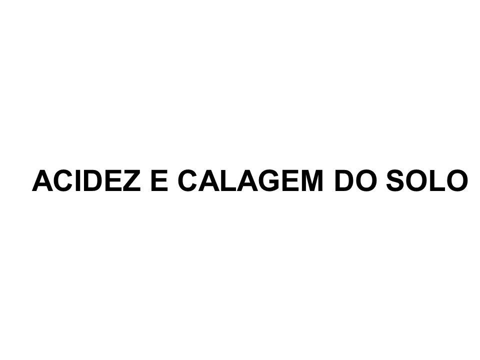 ACIDEZ E CALAGEM DO SOLO
