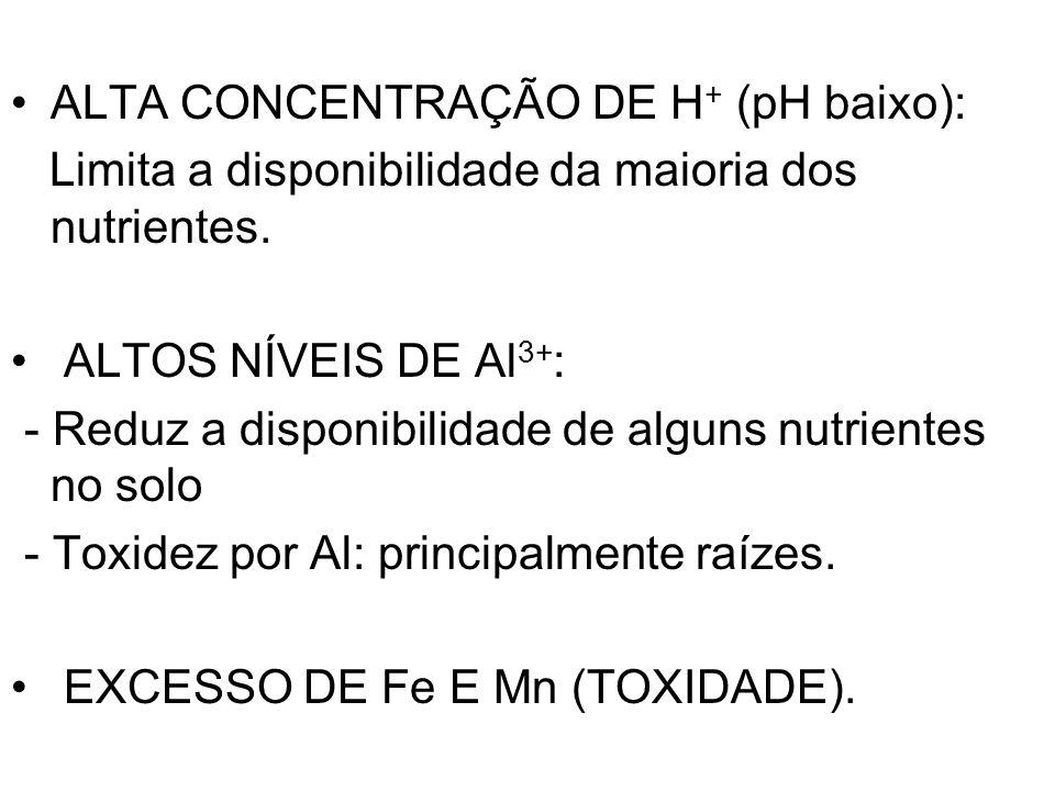 ALTA CONCENTRAÇÃO DE H + (pH baixo): Limita a disponibilidade da maioria dos nutrientes. ALTOS NÍVEIS DE Al 3+ : - Reduz a disponibilidade de alguns n