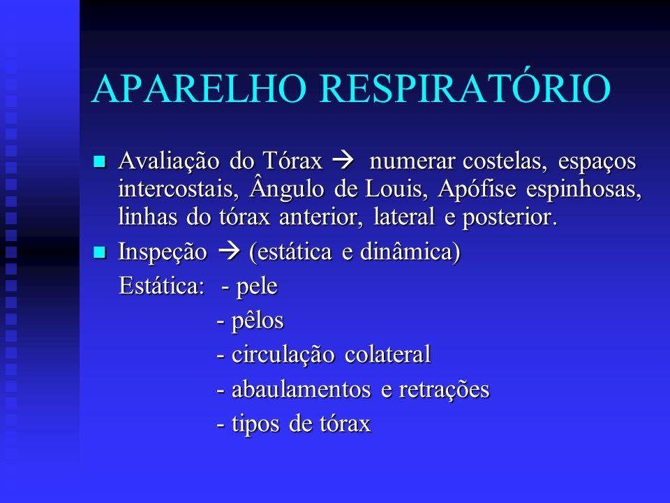 APARELHO RESPIRATÓRIO Avaliação do Tórax numerar costelas, espaços intercostais, Ângulo de Louis, Apófise espinhosas, linhas do tórax anterior, latera