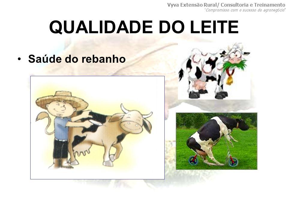 QUALIDADE DO LEITE Saúde do rebanho Vyva Extensão Rural/ Consultoria e Treinamento Compromisso com o sucesso do agroneg ó cio